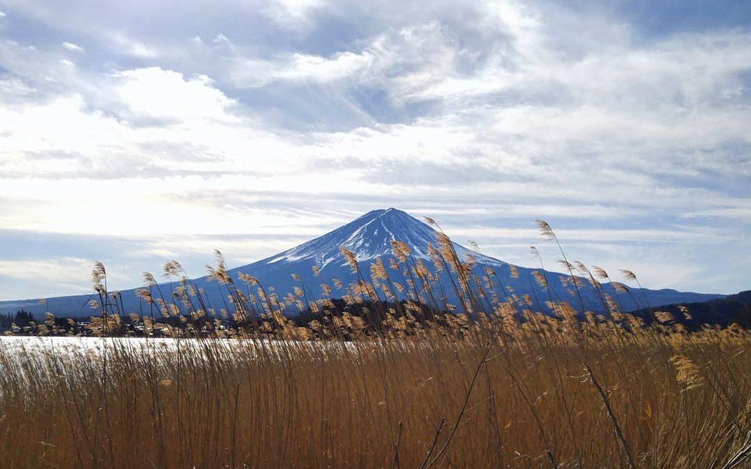 Risultati immagini per tokaido shinkansen panorama night